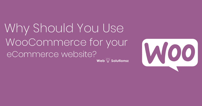 WooCommerce for your eCommerce website